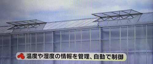 https://img.nanigoto.net/?u=2015/20151104_1500_05.jpg