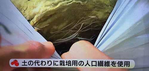 https://img.nanigoto.net/?u=2015/20151104_1500_13.jpg