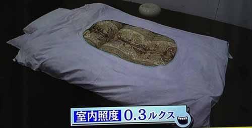 https://img.nanigoto.net/?u=2016/20160209_2340_14.jpg