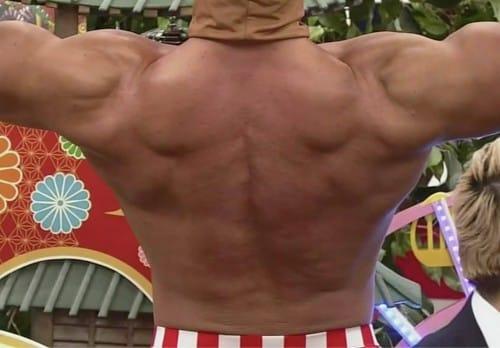 の 筋肉 名前 肩 【肩を動かす筋肉】棘上筋、棘下筋、小円筋、肩甲下筋 インナーマッスル