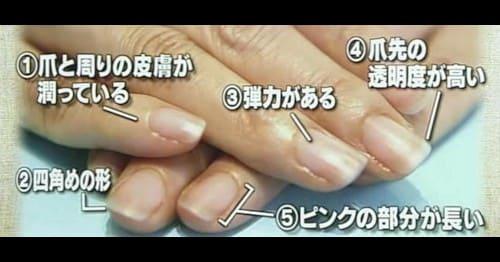 美爪の定義