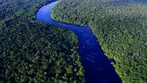 アマゾン川流域