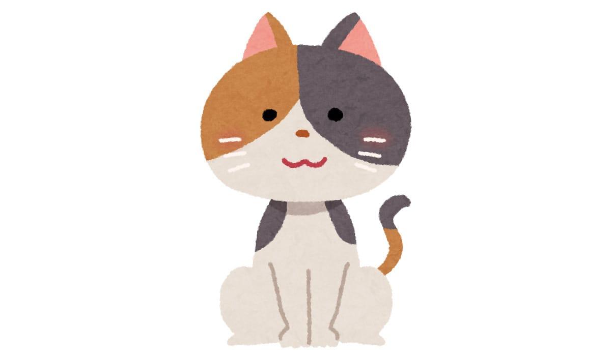 なぜ猫だけ色んな模様があるのか?:チコちゃんに叱られる!【2021/10/22】